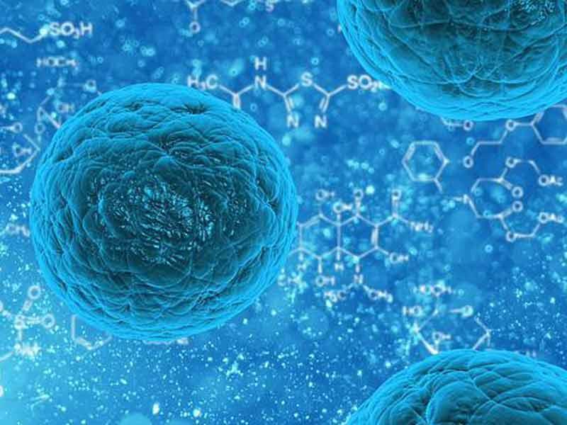 Cellfood Gel Untuk Herpes