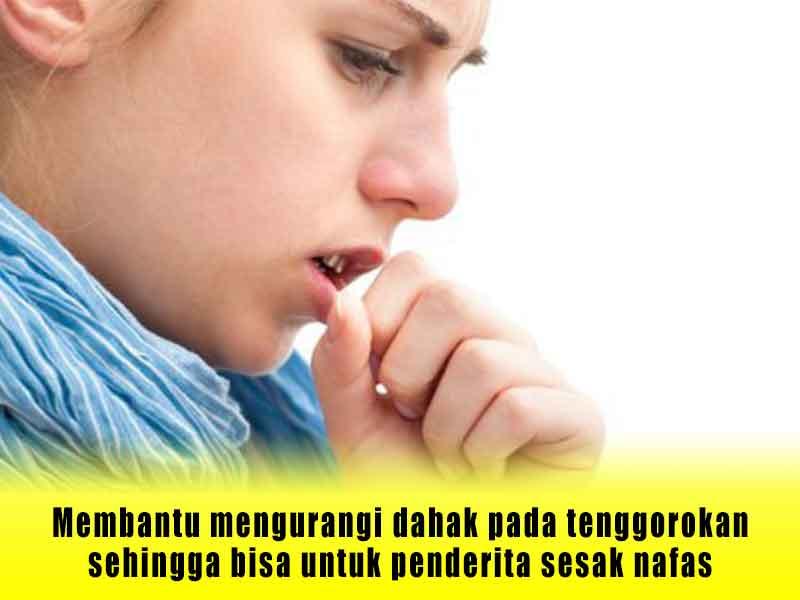 Review Pil Angkung Obat Stroke