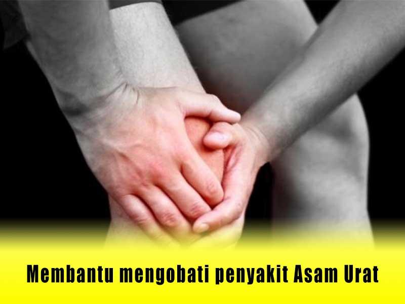 Harga Angkung Asli Di Indonesia