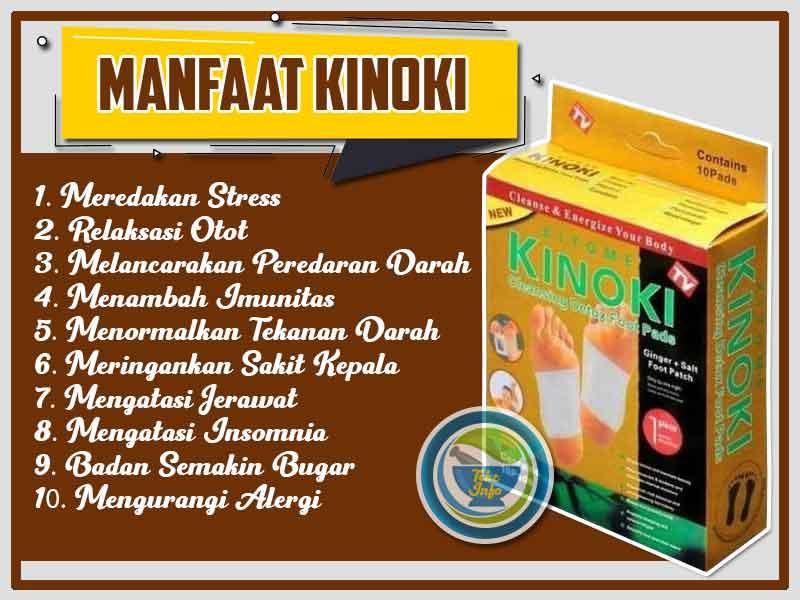 Jual Koyo Herbal Kinoki Detox Foot Pads di Luwu Timur