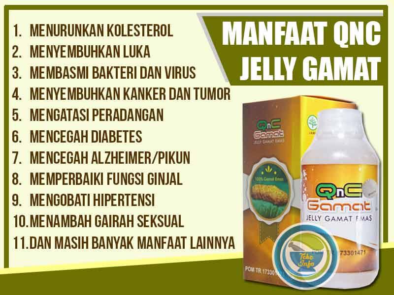 Agen QnC Jelly Gamat Asli di Kota Rasiei