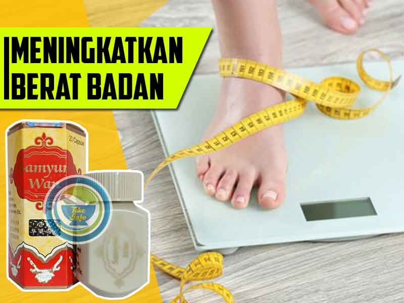 Jual Samyunwan Penggemuk Badan di Kota Padang