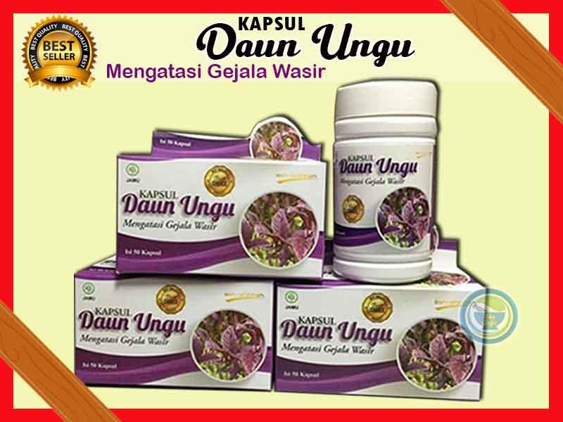 Review Kapsul Wasir Daun Ungu Original