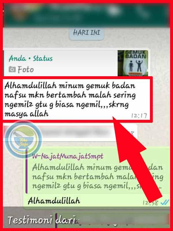 PROMO Madu Gemuk Badan di Kota Sukabumi